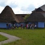Group houses of Gherţa Mică