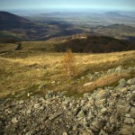 Vedere spre Țara Oașului de pe Vârful Pietroasa